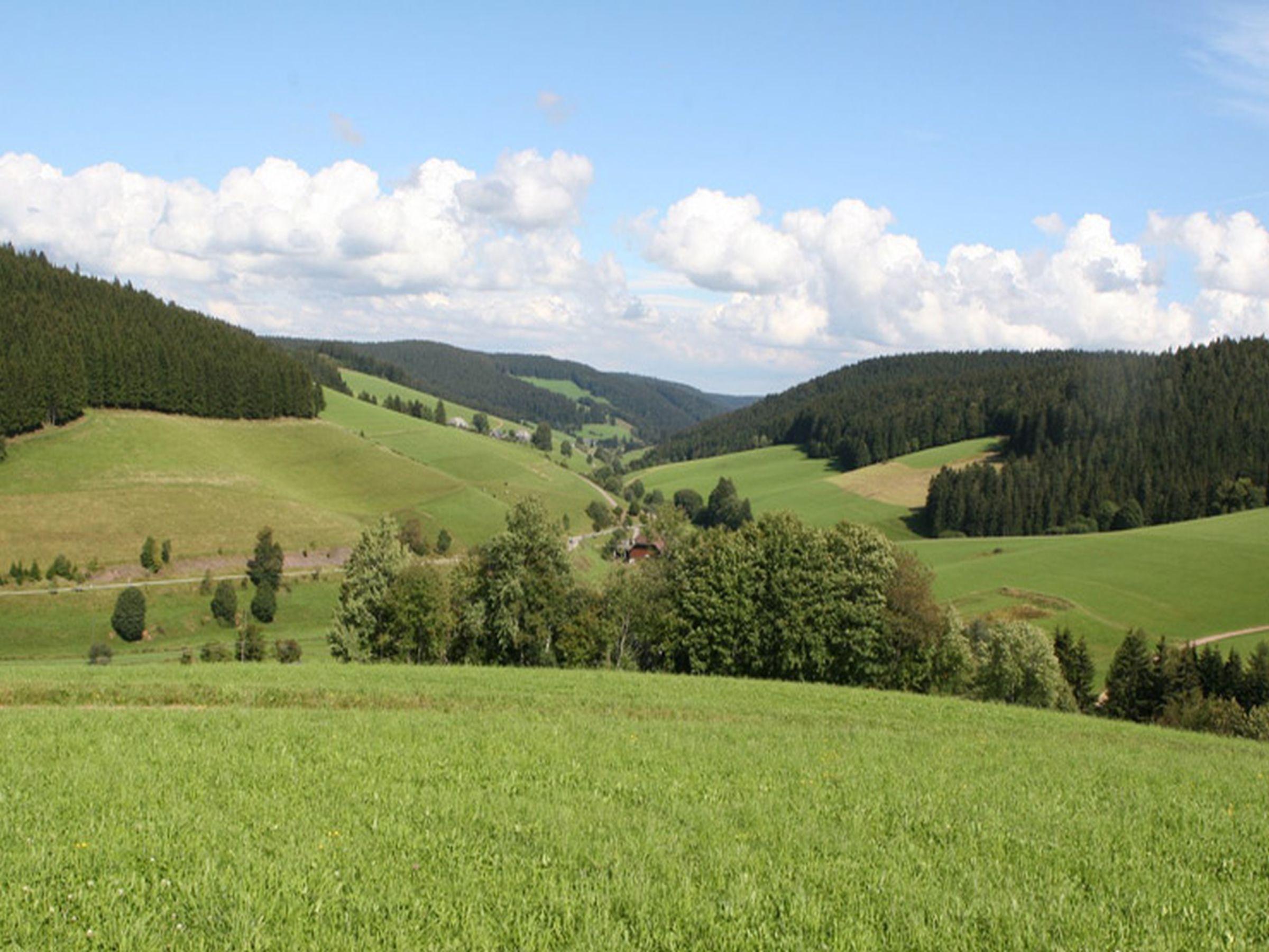 Ferienwohnung Altvogtshof, (Furtwangen). Ferienwohnung Lothar, 80qm, 2 Schlafräume, max. 4 Personen (2717422), Furtwangen, Schwarzwald, Baden-Württemberg, Deutschland, Bild 22