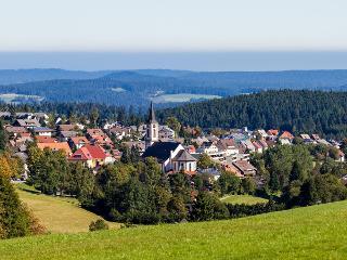 Blick auf den Ort Schönwald