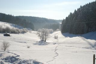 Blick ins Tal Februar 2012