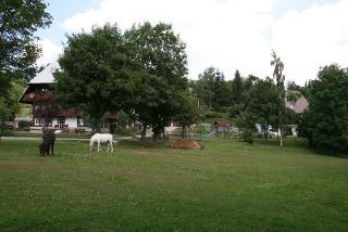 Gelände im Sommer