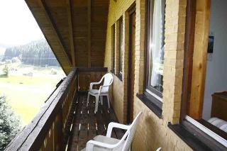 Blick vom Balkon Pusteblume