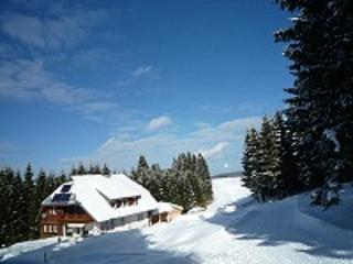 Hohlenbach im Winter