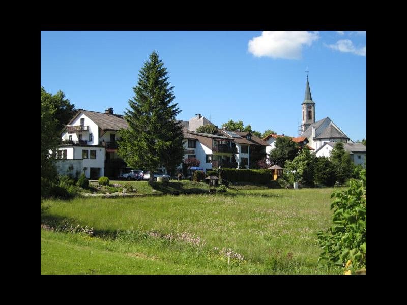 Hotel-Gasthof Schwarzwaldtanne im Sommer - Ansicht an einem schönen Sommertag.