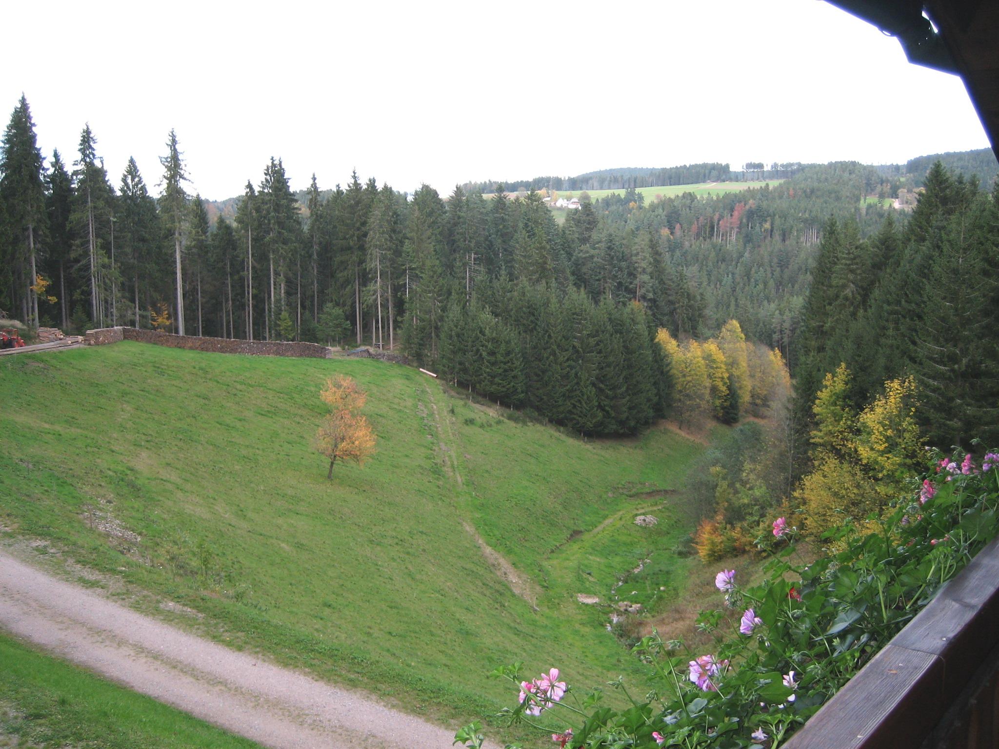 Ferienwohnung Zeifang, (Triberg-Gremmelsbach). Fer Ferienwohnung  Schwarzwald
