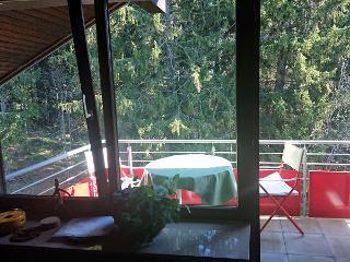 Balkon mit Blick in das Tal und den angrenzenden Wald