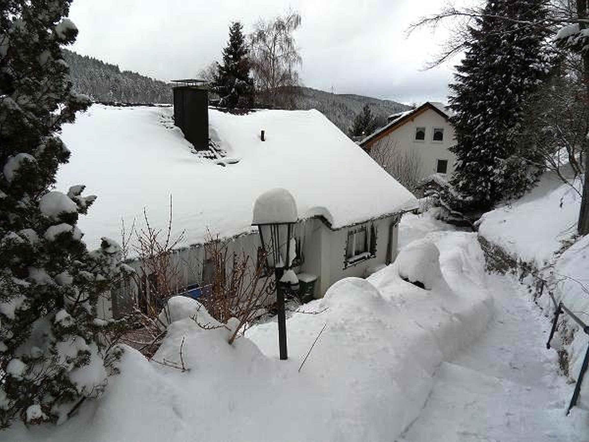 Haus Renate Groß, (Triberg). Ferienwohnung,  Ferienwohnung