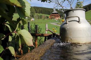 Der Balzenhof im Sommer
