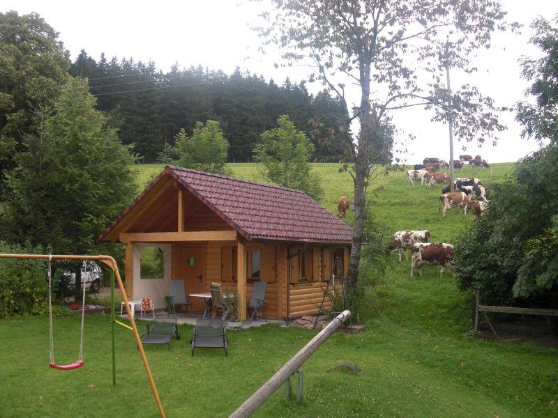 Ferienwohnung Willmannshof, (Furtwangen-Neukirch). Ferienwohnung Sonnenwinkel, 53qm, 1 Schlafzimmer, 1 W (2717453), Furtwangen, Schwarzwald, Baden-Württemberg, Deutschland, Bild 9