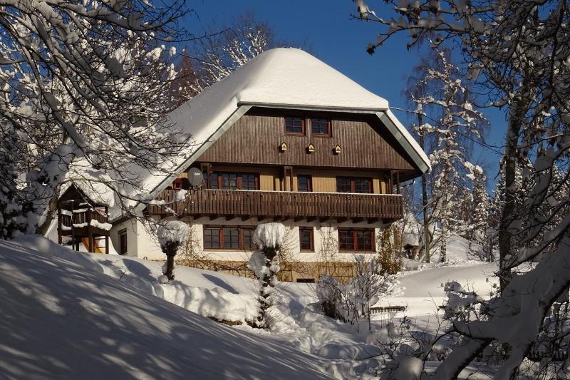 Alte Wagnerei im Winter