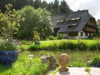 Blick Teich klein.jpg - Blick vom Pavillon und kleinem Teich