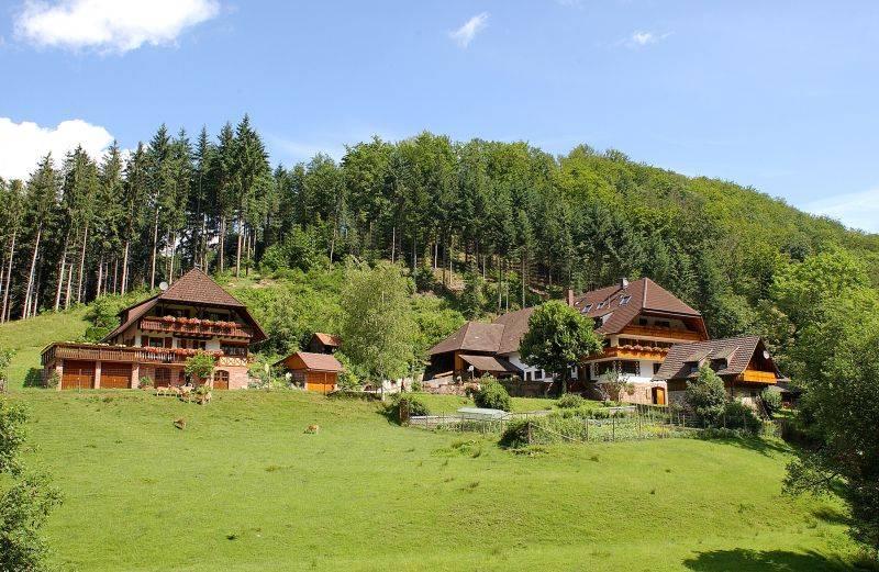 Ferienhof Wußler, (Gengenbach). Ferienwohnun Ferienwohnung  Schwarzwald