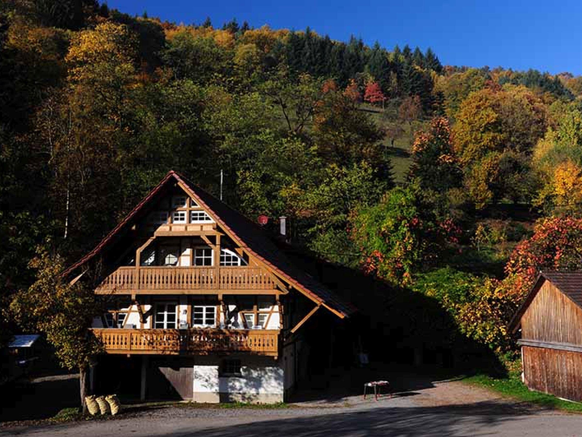 Ferienhof Männle, (Gengenbach). Ferienwohnung Ferienwohnung  Schwarzwald