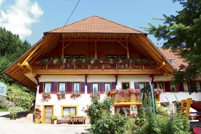 Ferienwohnung Friedershof, (Oberharmersbach). Ferienwohnung 3, 60qm, 2 Schlafzimmer, max. 5 Personen (2791736), Oberharmersbach, Schwarzwald, Baden-Württemberg, Deutschland, Bild 12