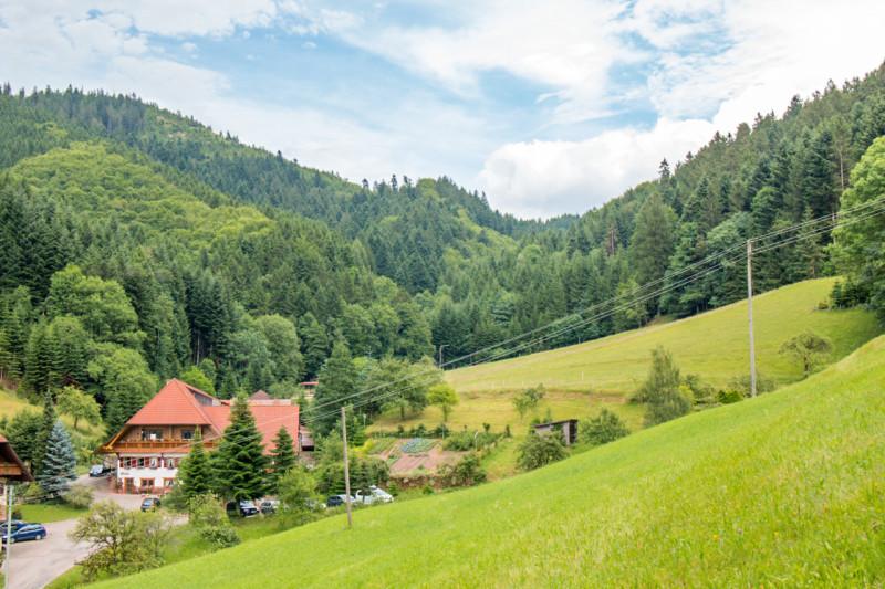 Ferienwohnung Friedershof, (Oberharmersbach). Ferienwohnung 3, 60qm, 2 Schlafzimmer, max. 5 Personen (2791736), Oberharmersbach, Schwarzwald, Baden-Württemberg, Deutschland, Bild 1