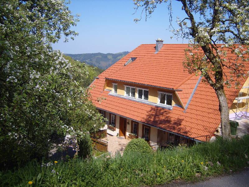 Ferienwohnung Langenberghof (Oberharmersbach). Ferienwohnung mit 50qm, 1 Schlafzimmer, für max. 2 Person (761497), Oberharmersbach, Schwarzwald, Baden-Württemberg, Deutschland, Bild 3