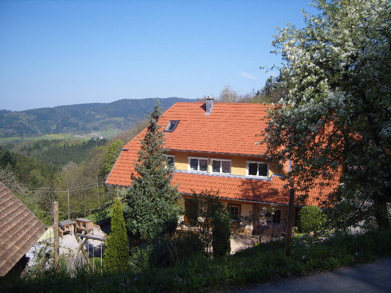 Ferienwohnung Langenberghof (Oberharmersbach). Ferienwohnung mit 50qm, 1 Schlafzimmer, für max. 2 Person (761497), Oberharmersbach, Schwarzwald, Baden-Württemberg, Deutschland, Bild 5