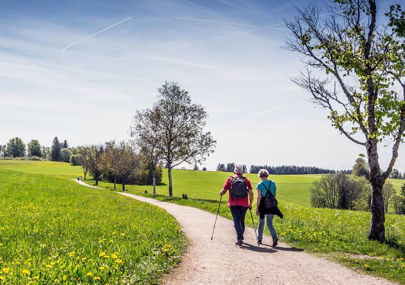 Portens Hotel Fernblick Ferienwelt Sudschwarzwald