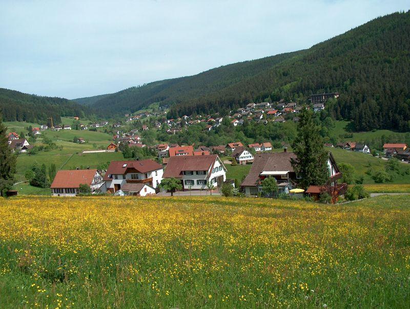 Ferienhaus Haus Schwarzwaldgrund, (Baiersbronn). Fewo Typ 2a, 1 Schlafraum, 1 Wohn-Schlafraum, max. 2 (662521), Baiersbronn, Schwarzwald, Baden-Württemberg, Deutschland, Bild 7