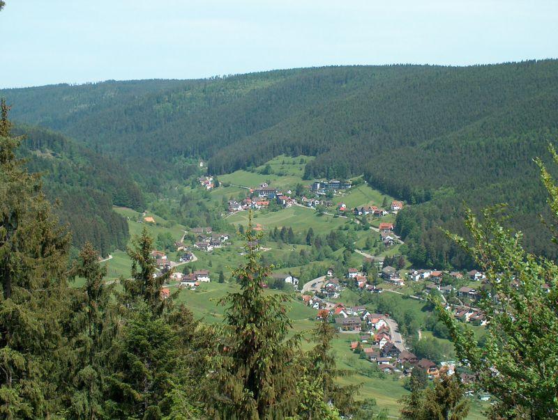 Ferienwohnung Haus Schwarzwaldgrund, (Baiersbronn). Fewo Typ 2a, 1 Schlafraum, 1 Wohn-Schlafraum, max. 2 (662521), Baiersbronn, Schwarzwald, Baden-Württemberg, Deutschland, Bild 6