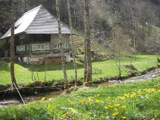 Frühlingserwachen im Hexenloch bei Furtwangen/Neukirch
