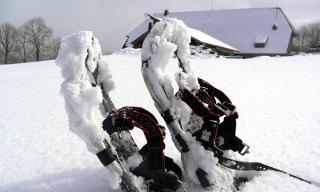 Leichte Tour übers Windeck / Urheber: Schneeschuh Akademie Hinterzarten / Rechteinhaber: © Schneeschuh Akademie Hinterzarten
