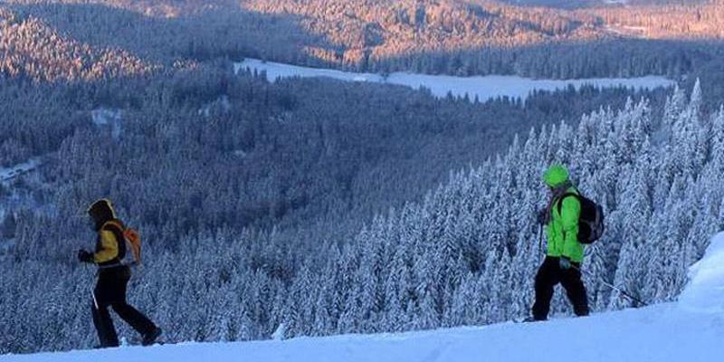 Schneeschuhwanderung: Panoramatour am Hinterwaldkopf mit Kaffeeplausch