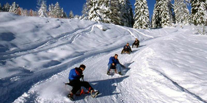 """Schneeschuhwanderung: Gipfeltour mit """"Heißem Stein""""-Buffet & Schlittenfahrt"""