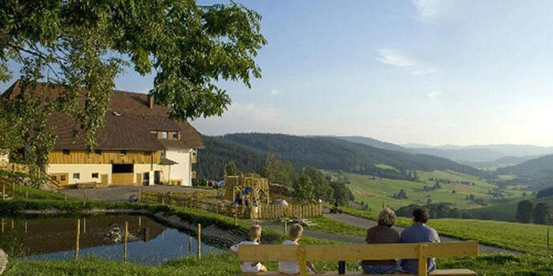 Segway-Tour: Panoramatour im Hochschwarzwald