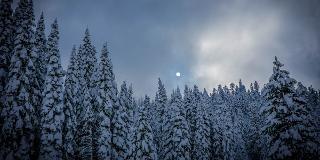 Mondscheintour am Schauinsland / Urheber: Original Landreisen AG / Rechteinhaber: © Original Landreisen AG