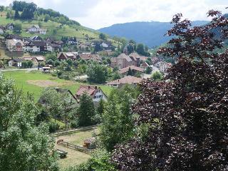 Talblick auf Seebach