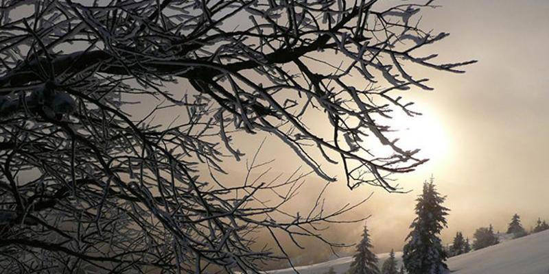 Schneeschuhwanderung: Morgentour auf dem Schauinsland