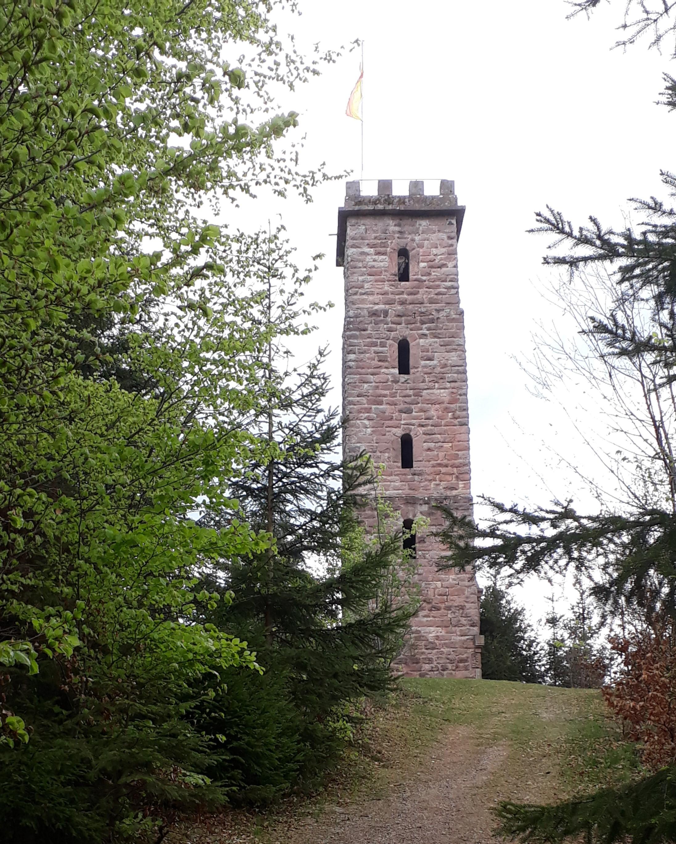 Ferienwohnung Haus Streck (Bad Peterstal-Griesbach). Ferienwohnung, 65qm, Terrasse, 1 Schlafzimmer, max. (2792816), Bad Peterstal-Griesbach, Schwarzwald, Baden-Württemberg, Deutschland, Bild 14