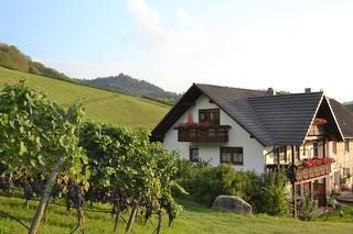 Dilgerhof