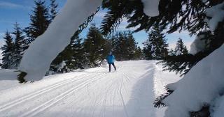Skiwanderung Schwarzwald / Urheber: Original Landreisen AG / Rechteinhaber: © Original Landreisen AG
