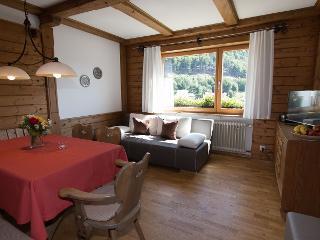 Wohnzimmer mit Sat-TV und Doppelschlaf-Sofa