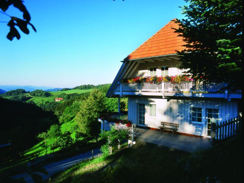 Schornhof, (Oberwolfach). Ferienwohnung Hofblick,