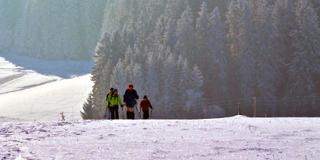Halbtagestour Zweiseenblick / Urheber: Schneeschuh Akademie Hinterzarten / Rechteinhaber: © Schneeschuh Akademie Hinterzarten