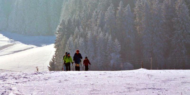 Schneeschuhwanderung: Halbtagestour zum Zweiseenblick