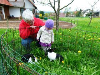 Besuch bei den Kaninchen