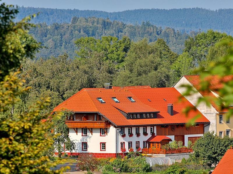 Haus Schlageter, (Dachsberg). Ferienwohnung DG, 45