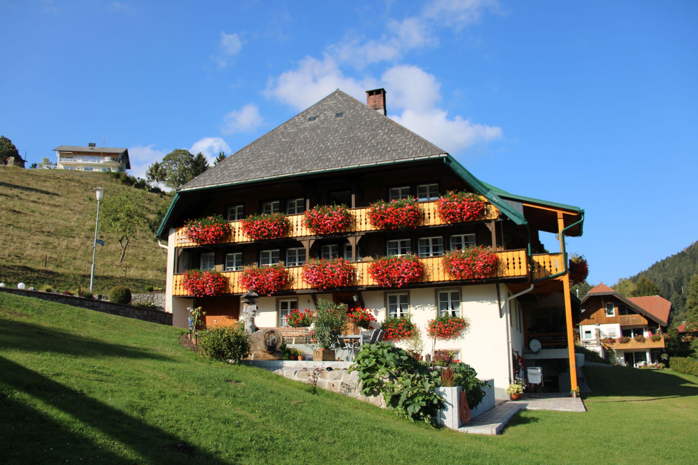 Haus Talblick, (Todtmoos). Ferienwohnung, 60 qm, 1