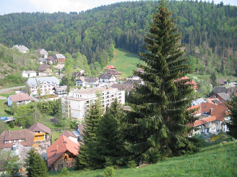 Ferienwohnung Kornelia, (Todtmoos). Kornelia, 75 qm, 1-6 Personen (2718275), Todtmoos, Schwarzwald, Baden-Württemberg, Deutschland, Bild 2