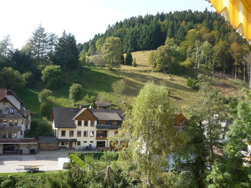 Ferienwohnung Kornelia, (Todtmoos). Kornelia, 75 qm, 1-6 Personen (2718275), Todtmoos, Schwarzwald, Baden-Württemberg, Deutschland, Bild 15