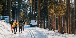 Winterwanderung: Zum Hüttenraclette im Berghäusle / Urheber: Original Landreisen AG / Rechteinhaber: © Original Landreisen AG