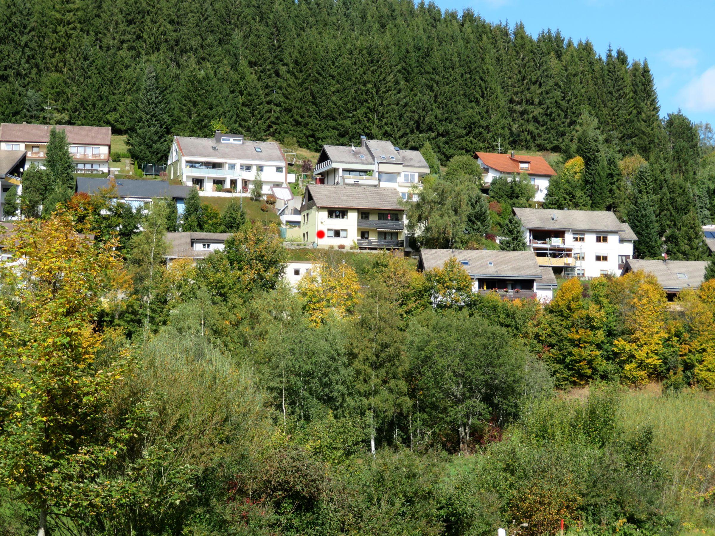 Ferienwohnung Regina, (Furtwangen). Ferienwohnung, 97qm, 2 Schlafzimmer, max. 3 Personen (2718603), Furtwangen, Schwarzwald, Baden-Württemberg, Deutschland, Bild 2