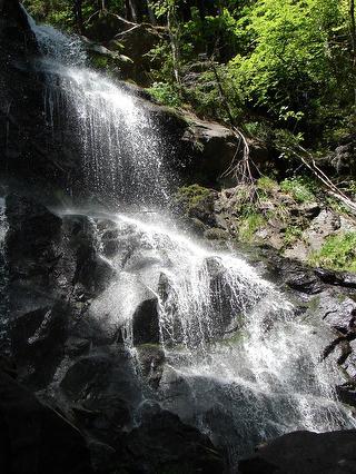 """Wanderung """"Zweribach-Wasserfälle"""""""