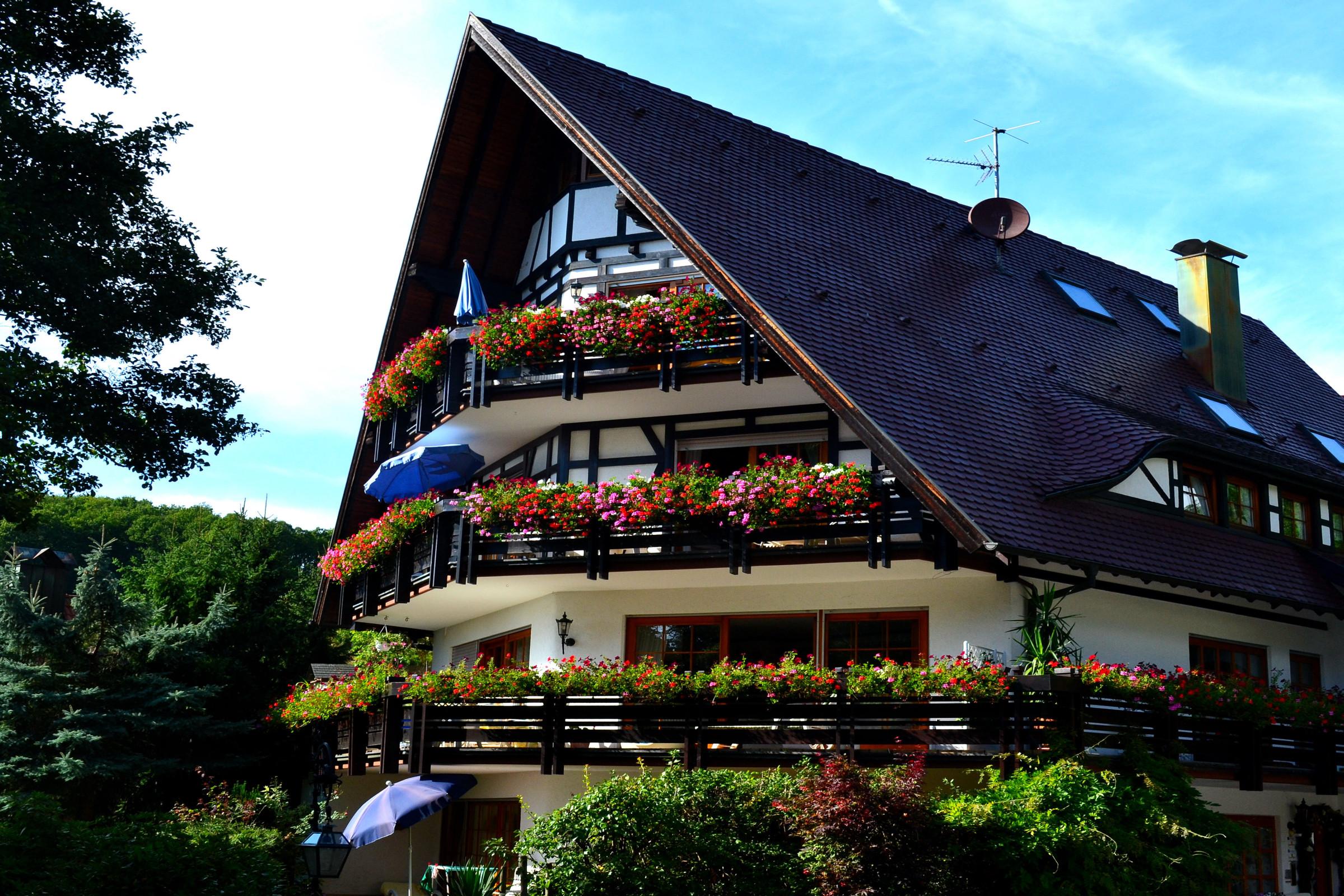 haus bachschwalbe sasbachwalden ferienwohnung nachtigall 50qm 1 schlafzimmer max 2. Black Bedroom Furniture Sets. Home Design Ideas
