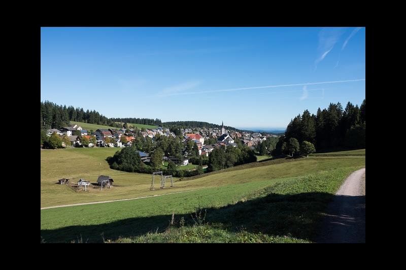 Blick auf Schönwald