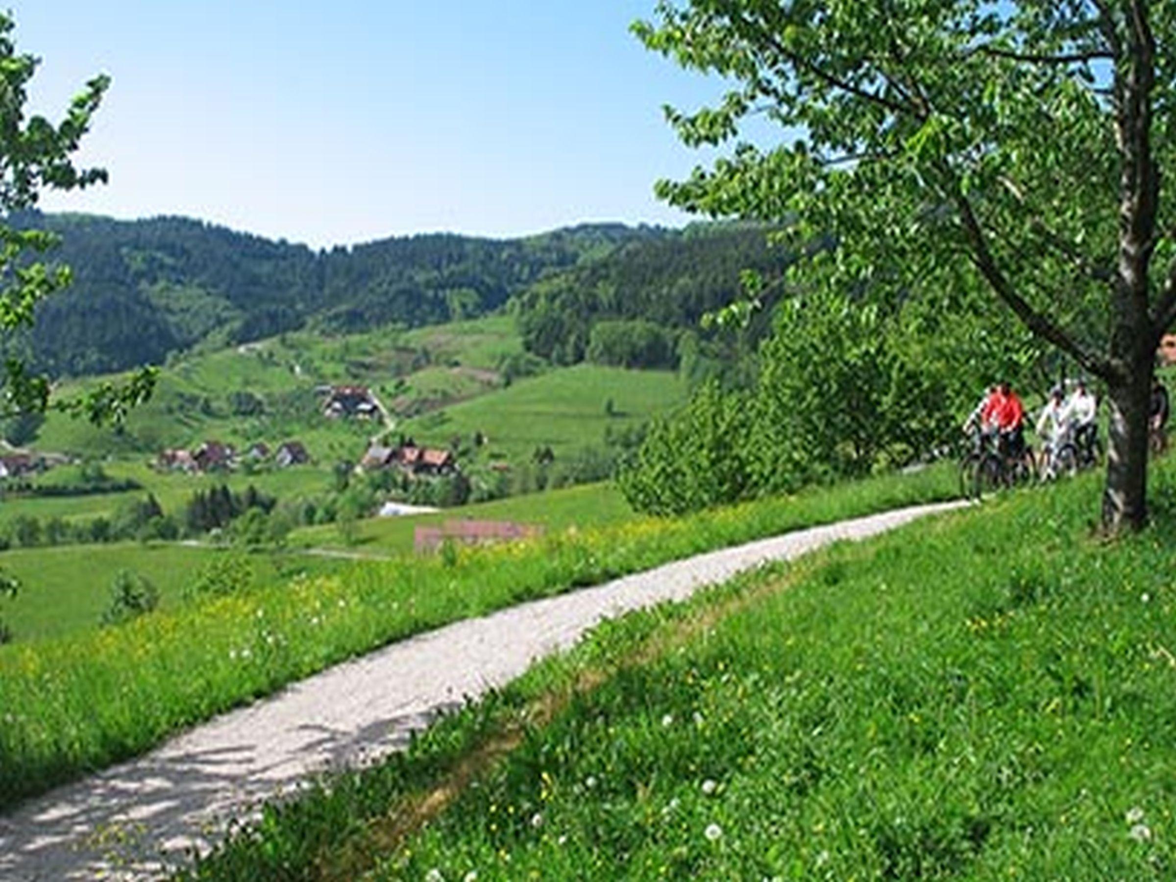 Ferienwohnung Ferienhof Fischer, (Seebach). Blockhütte für max. 4 Personen (2215201), Seebach, Schwarzwald, Baden-Württemberg, Deutschland, Bild 3