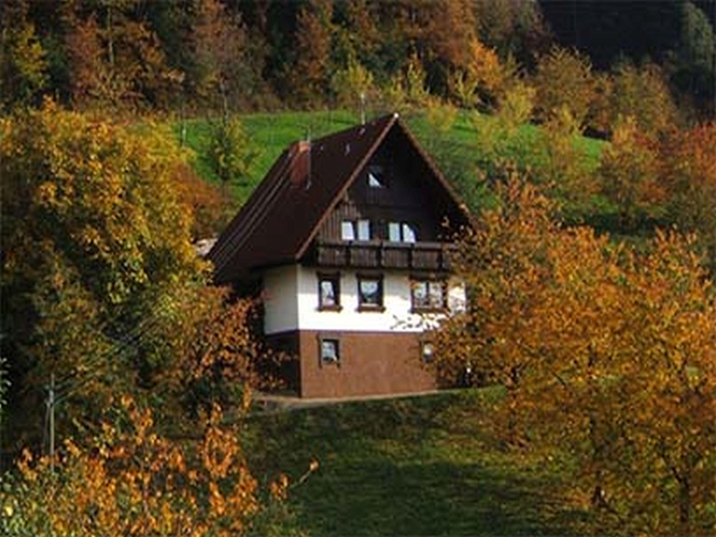 Ferienwohnung Ferienhof Fischer, (Seebach). Blockhütte für max. 4 Personen (2215201), Seebach, Schwarzwald, Baden-Württemberg, Deutschland, Bild 2